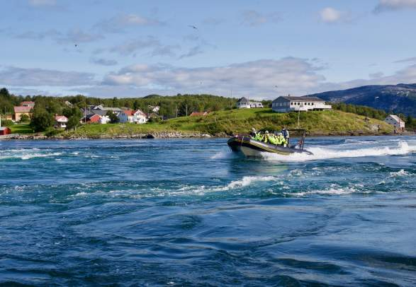 RIB-safari in Saltstraumen