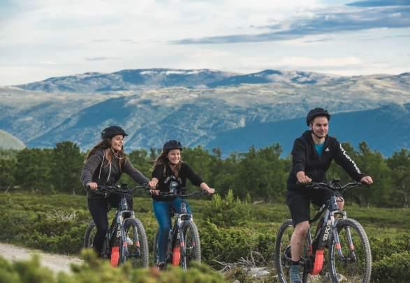 Bike rental at Dombås | Dovrefjell Adventures