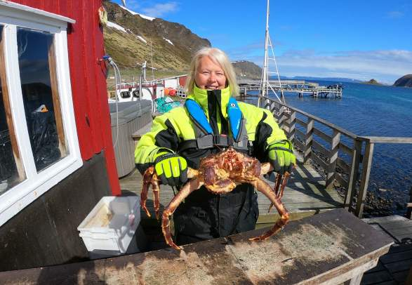 From sea to shore, the wondrous world of the king crab