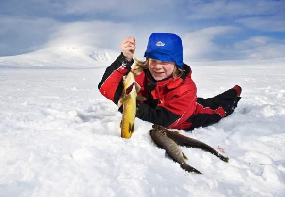 Blåfjella-Skjækerfjella Nationalpark