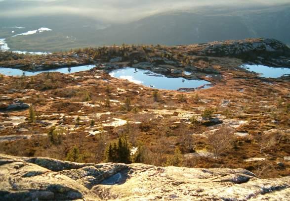 """Toppentochten """"Årdalsknapen"""" - 8 km"""