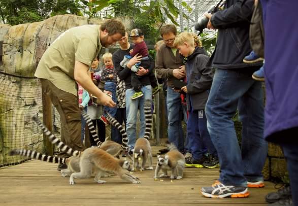 Den lille Dyrehage (zoo) Gjerstad