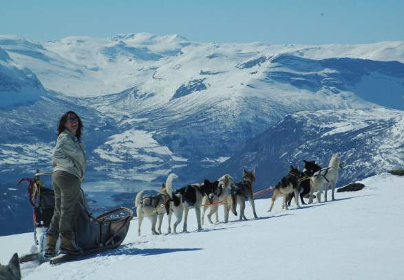 Beito Husky Tours - Dog sledding