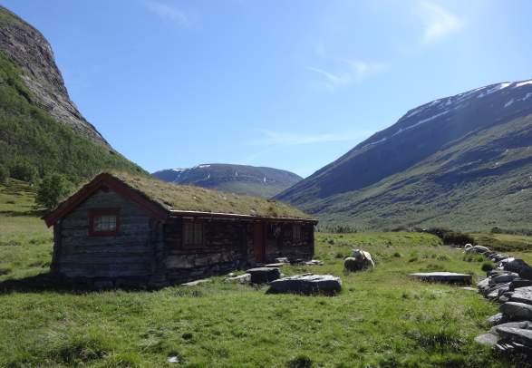 Dovrefjell-Sunndalsfjella Nasjonalpark