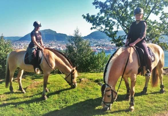 Explore Bergen from the horseback