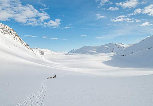 Dog sledding with Beito Husky Tours