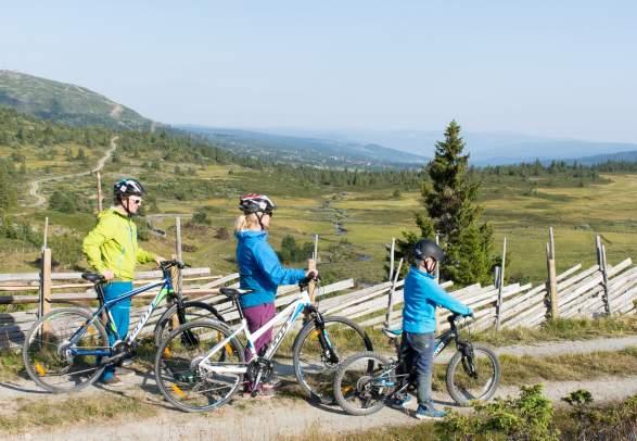 Radfahren - Skeikampen-Torsdalen-Gammeldalen (5 km)