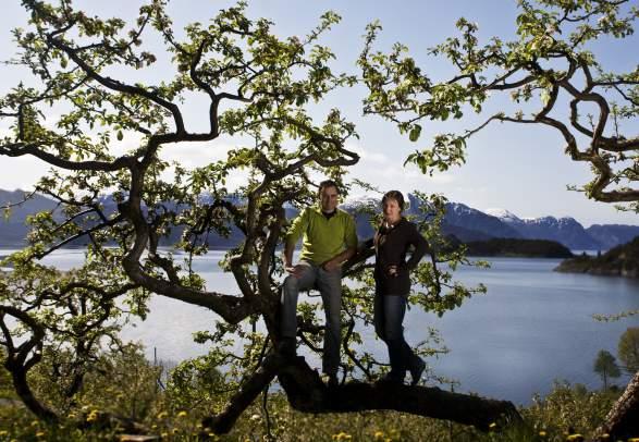 Steinstø Frukt- og Kakebu