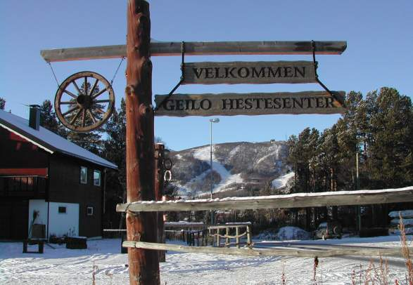 Geilo Hestesenter