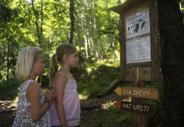 Hiking: Nature trail (easy family walk)