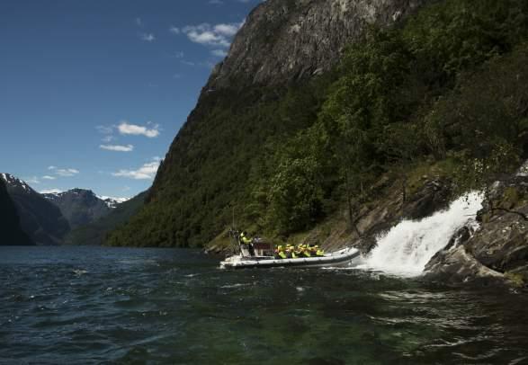 Fjordsafari