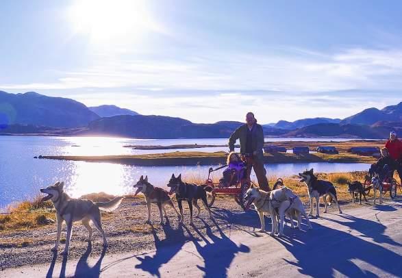 Beito Husky Tours - Hundekjøring på hjul