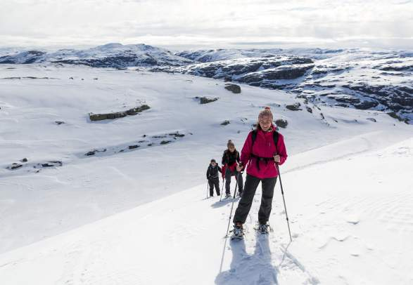Fjord & Mountain Snowshoe Trek (2-day trip)