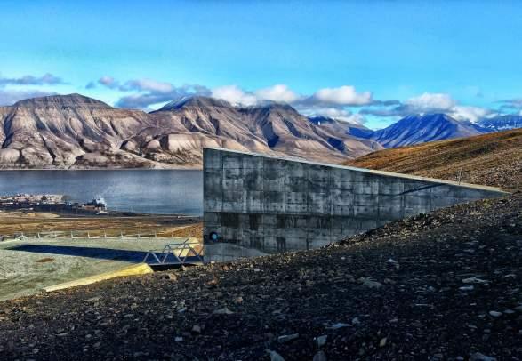 Alt i ett! - Sightseeing, huskybesøk og fugler - Discover Svalbard