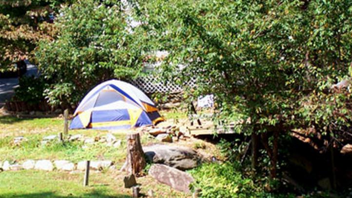 Camping in North Carolina near Lake Lure & The Blue Ridge Foothills
