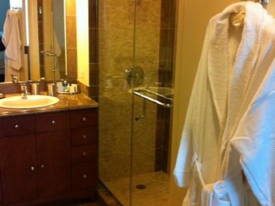 The Residence -1bdrm Bathroom