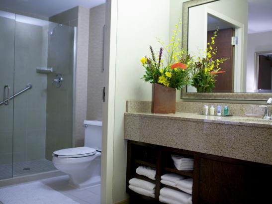 Bathroom in Deluxe Guestroom