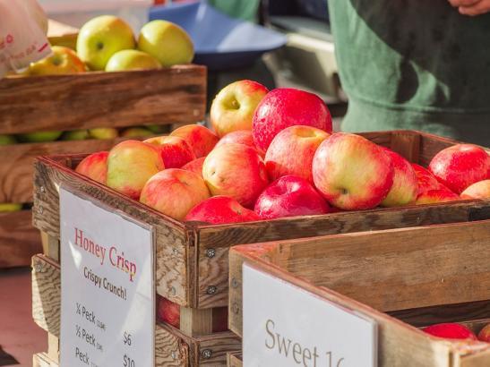 Crisp apples | credit choochoo-ca-chew