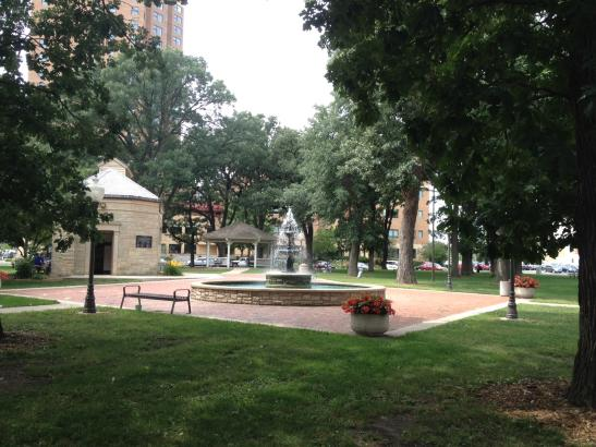 Central Park | credit olivejuicestudios.com