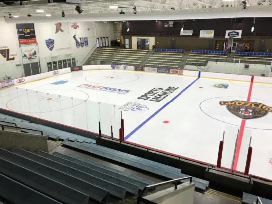 Rochester Grizzlies Ice