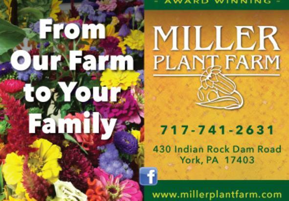 Miller Plant Farm, York County, PA
