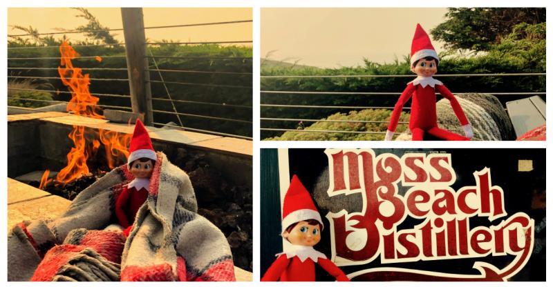 Elf Mateo at Moss Beach