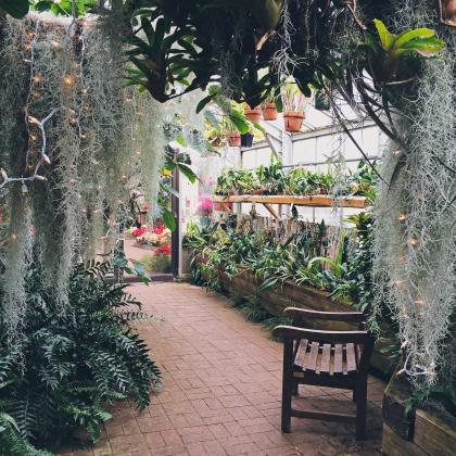Rochester Zen Garden