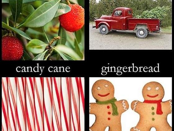 Holiday Scents Are Here!