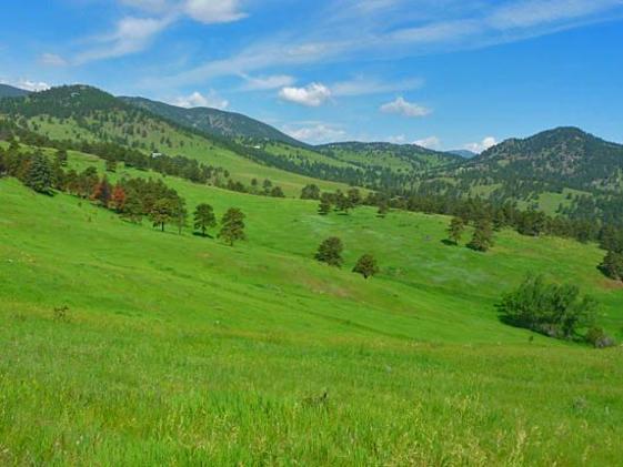white-ranch-park.jpg