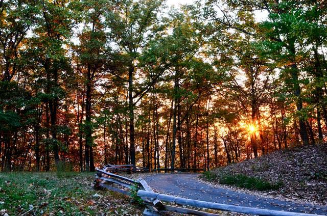 Roanoke Mountain Road - Fall Photo