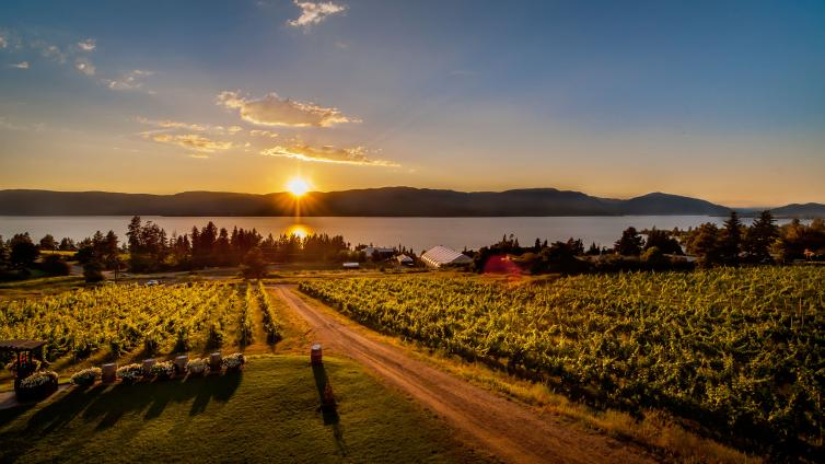 Summerhill Sunset Bistro view