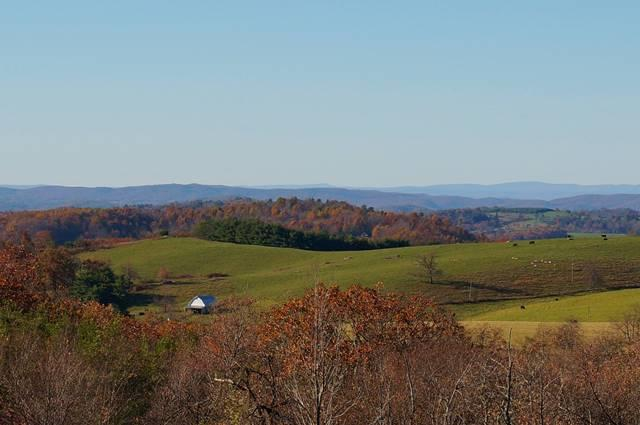 Fall Chateau Morrisette View - Fall Photo