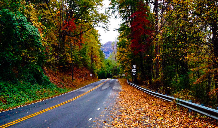 Fall Color Country Roads