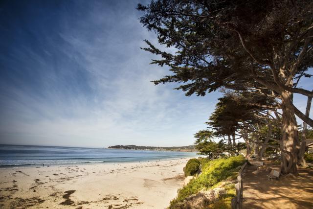 Carmel Beach Blog