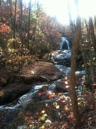 Roaring Run Falls - Fall Hike