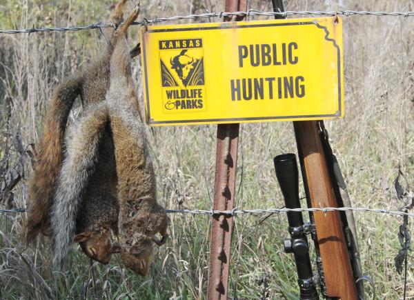 Squirrel hunting sign