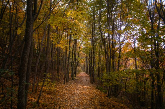 Mill Mountain Park - Roanoke, Virginia