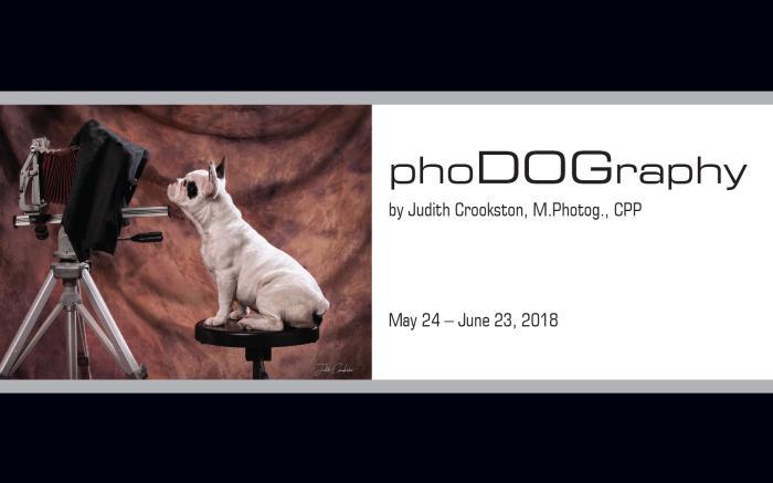 PhoDOGraphy Exhibit