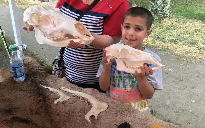Learning about elk at the Westmoreland Arts & Heritage Festival