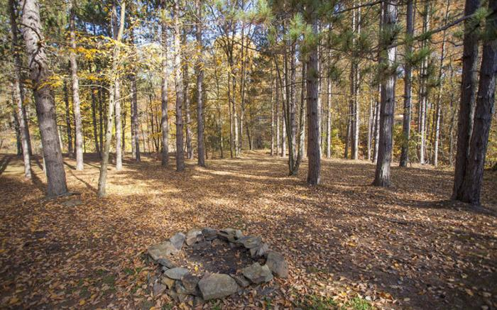 Boyer's Pond Campground