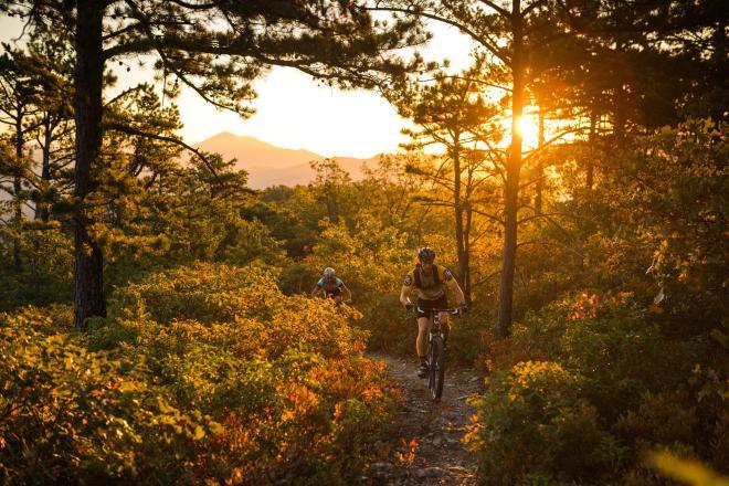 Dody Ridge Roanoke - Mountain Biking