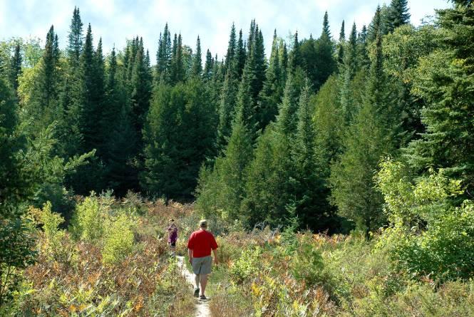 Nipissing & Trillium Ridge Trails