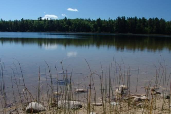 Kehl Lake Natural Area
