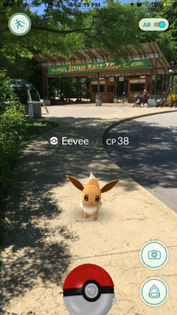 Catching an Eevee at the John Ball Zoo in Grand Rapids