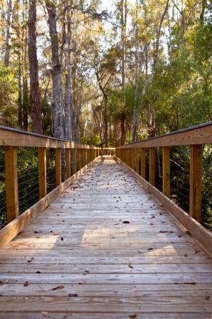 Panama City Beach Florida Conservation Park