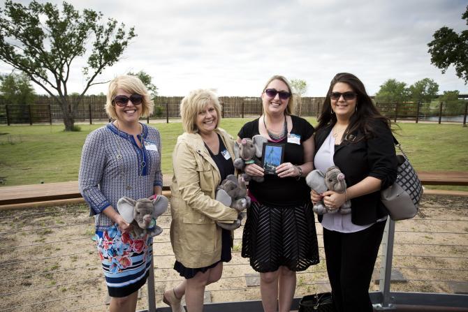 Sedgwick County Zoo Elephants Meeting Space in Wichita KS