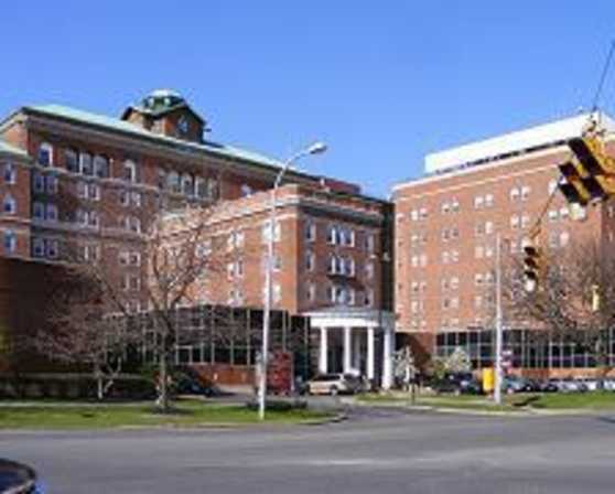 Albany med college