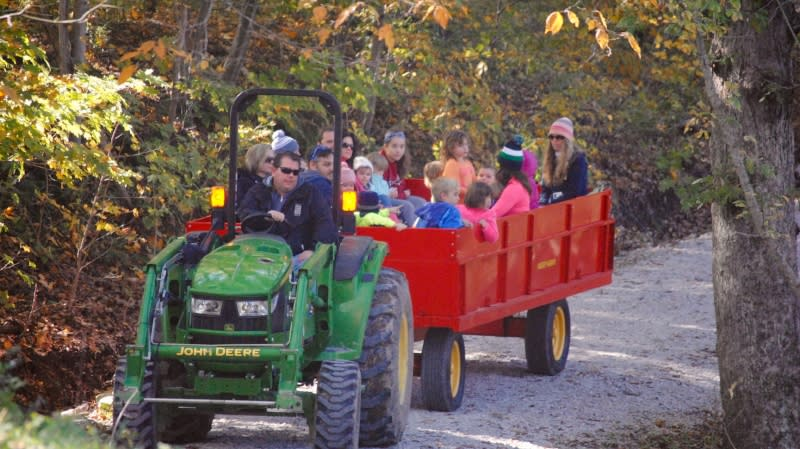 Hayrides at the Fall Colors Festival at McCloud Nature Park