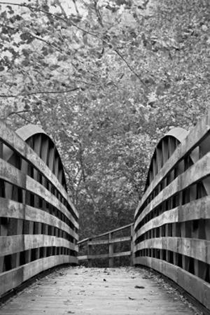 White Lick Creek bridge in Ellis Park