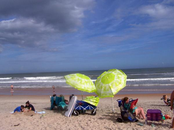 From Surf Fishing To Bird Watching In Ormond By The Sea S North Peninsula State Park Beach Goers Are Offered Miles Of Unspoiled